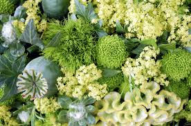 green flowers for st patrick's day
