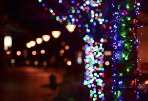 Christmas Light Removal