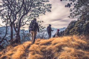 Guided Nature Hike